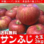送料無料 青森県産 サンふじ りんご 3kg 大玉 ご予約
