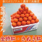 ご予約 香川オリジナル 金時みかん 濃厚で高糖度 金時紅 さぬき紅 5kg