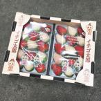 ご予約 いちご太郎 奈良県産 白いちご 白苺 パールホワイト & 古都華 ことか 2パック