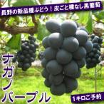 ご予約 長野の新品種ぶどう 皮ごと種なし 黒ぶどう ナガノパープル 1kg 2〜3房