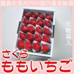 ご予約 徳島 佐那河内産 国内最高級 苺 さくらももいちご 化粧箱入