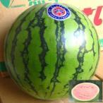 ≪3500円以上送料無料≫中玉 すいか スイカ 西瓜 1玉