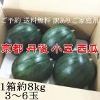 ご予約 送料無料 訳あり ご家庭用 京都 丹後 小玉 西瓜 すいか ボン 1箱約8kg 3〜6玉