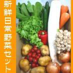 さんきん新鮮日常野菜セット!