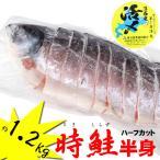 【週間特売】北海道産 時鮭(トキシラズ) ハーフカット 約1.2kg