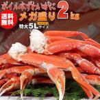 ≪蟹祭り≫かに カニ 蟹 ズワイガニ 送料無料 ボイルズワイガニ1肩350g超5Lずわい蟹メガ盛り3.2kg化粧箱