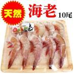 Shrimp - 天然 エビ 10尾入り 無頭 殻付き 食べごたえ満点