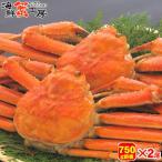 カニ ギフト ボイル ズワイガニ 姿 蟹味噌 800g前後 2尾 蟹セット