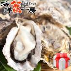 牡蠣 殻付き Mサイズ 10個 牡蠣 冷凍 牡蠣 北海道 厚岸産 お取り寄せ 海鮮 送料無料