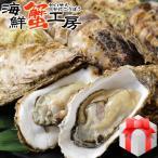 牡蠣 殻付き Mサイズ 20個 牡蠣 冷凍 牡蠣 北海道 厚岸産 お取り寄せ 海鮮 送料無料