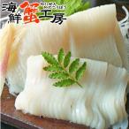 イカ 刺身 北海道産 イカソーメン 500g 10柵入り お取り寄せ ギフト 海鮮 グルメ 2個で送料無料 プレゼント 誕生日祝 御礼 御祝 内祝