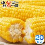 とうもろこし 味来 L〜2Lサイズ 20本入 北海道 十勝 産地直送 とうきび お取り寄せ グルメ コーン 甘味 スウィートコーン 生で食べれる