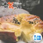 スイートポテト 西洋焼き芋 ハマポテト 150g スイートポテト 焼き芋 焼いも 焼芋 サツマイモ さつまいも 茨城県産 スイーツ おかし ポテト ジュブレ横浜工房
