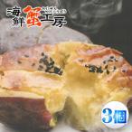 スイートポテト 西洋焼き芋 ハマポテト 150g×3個 スイートポテト 焼き芋 焼いも 焼芋 サツマイモ さつまいも 茨城県産 スイーツ ポテト ジュブレ横浜工房