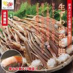 生ずわいがに肩付脚 3kg / 生ずわいがに 生ズワイガニ かに カニ 蟹 セクション