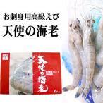 ゴダック 天使の海老 1kg(中型、30尾前後入り、クルマエビ属) お刺身用高級エビ、天使のえび。天使の蝦は料理のプロ達が絶賛したえびです。(ギフト)