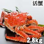 活タラバガニ オス 2.8kg 活蟹 活けたらば蟹 活タラバ蟹 茹で方の レシピ付き