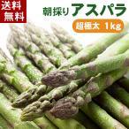 (送料無料)超極太3Lサイズ 北海道グリーンアスパラ 1kg 美味しい旬の北海道産アスパラガスが食べられるのは春だけ。グルメ通販(ギフト)