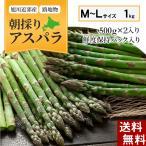 (送料無料)北海道グリーンアスパラ M〜Lサイズ混合 1kg 美味しい旬の北海道産アスパラガスを産地直送。北海道産(美瑛産 名寄産)