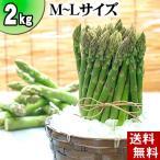 蘆筍 - (送料無料)北海道グリーンアスパラ M〜Lサイズ混合 2kg 美味しい旬の北海道産アスパラガスを産地直送。グルメお取り寄せ(ギフト)