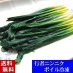 其它 - (送料無料)行者にんにく 500g ボイル冷凍 北海道産の野菜、行者ニンニクがいつでも食べられます。ギョウジャニンニクはヒトビロ、キトビロとも呼ばれます