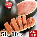 (送料無料)特大でんすけすいか 秀品 5L 10〜11kg 黒い表皮の果肉、伝助・田助西瓜。北海道産デンスケスイカ/でんすけスイカ。旬のフルーツ(お中元ギフト)