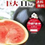 (送料無料)巨大でんすけすいか 秀品 6L 11kg以上 黒い表皮の果肉、伝助・田助西瓜。北海道産デンスケスイカ/でんすけスイカ。旬のフルーツ(お中元ギフト)