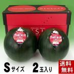 (送料無料)でんすけすいか 優品以上 小玉 4kgが2玉入り 黒い表皮の果肉、伝助・田助西瓜。北海道産デンスケスイカ/でんすけスイカ。旬のフルーツ(お中元ギフト)