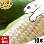 蔬菜 - (送料無料)白いとうもろこし 白くまコーン ピュアホワイト 10本入り 生食 北海道産スイートコーン 朝もぎ生とうきびお取り寄せ