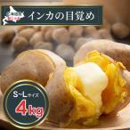 (送料無料)北海道産じゃがいも インカのめざめ 4kg(新じゃが S〜Lサイズ混合 インカの目覚め・芋)希少種のジャガイモです。グルメお取り寄せ