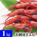 超特大ナンバン海老 冷凍甘エビ 3Lサイズ 1kg(50尾前後入り) 甘海老のトロける甘み、蝦味噌も絶品。お刺身、お寿司(ギフト)