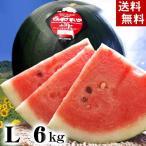 (送料無料)でんすけすいか 秀品 Lサイズ 6〜7kg 黒い表皮の果肉、伝助・田助西瓜。北海道産デンスケスイカ/でんすけスイカ。旬のフルーツ(お中元ギフト)