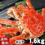 (送料無料) タラバガニ たらばがに 姿 1.6kg  ボイル冷凍(ロシア産) たらば蟹姿 北海道産加工のカニ(ギフト) 御歳暮にいかが?