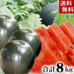 (送料無料)北海道産富良野麓郷 ろくごう小玉黒すいか 3〜5玉入りで合計8kg 冷蔵庫にも入れやすい小さい黒西瓜。旬のフルーツ(お中元ギフト)