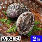 活蝦夷アワビ 2個 計200g 北海道礼文島産 活えぞあわびだからこそお刺身、肝醤油、肝刺し、煮物、鉄板であわびステーキで食べられます。