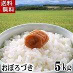 (送料無料)29年度 新米 北海道産おぼろづき 5kg 白米、精米 もっちりした食感のお米。柔らかい食感と強い粘りが特徴のおぼろづき。グルメ通販(ギフト)