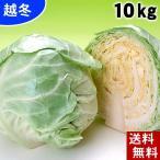 (送料無料)北海道産 越冬キャベツ 合計10kg(4〜7玉入り)雪の下キャベツ イチゴより甘い雪下キャベツ 糖度10度