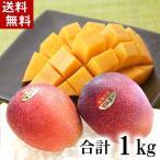 (送料無料)沖縄産 アップルマンゴー 合計1kg(2〜4玉入り) 南国沖縄のとれたてマンゴー。