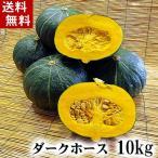 (送料無料)北海道産カボチャ ダークホース 10kg(5〜7玉入り)粉質でホクホクな南瓜。北海道かぼちゃ野菜グルメお取り寄せ