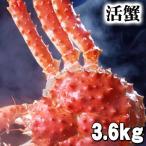 北海道産 活タラバガニ オス 3.6kg 活けたらば蟹