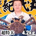 活タラバガニ オス 4.2kg前後 超特大 活けたらば蟹