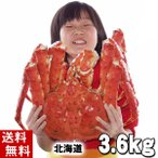 (送料無料) タラバガニ たらばがに 姿 3.6kg 特大 ボイル冷凍(北海道産) たらば蟹贈答用のカニ姿。かに飯や焼きガニも美味しい。(ギフト)