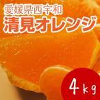名産地の完熟清見オレンジ4kg