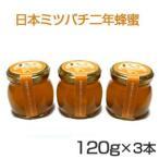 日本ミツバチの2年蜂蜜120g×3本 送料無料セット