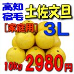 【高知宿毛産】「家庭用」土佐文旦10kg3L