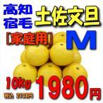 【高知宿毛産】「家庭用」土佐文旦10kgM
