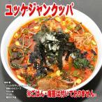 本場韓国の味 韓国雑炊ユッケジャンクッパ 1パック(230g)