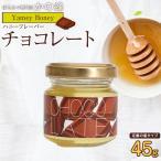 はにふれ「チョコ」フレーバー蜂蜜(45g)蜂蜜専門店 かの蜂