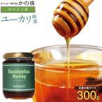 【スペイン産】ユーカリ蜂蜜 300g ユ