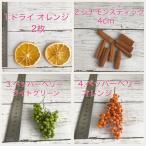 new ハーバリウム 花材 バイキング 5種類選べる 材料 あじさい カスミ草 オレンジ ゆうメール送料無料